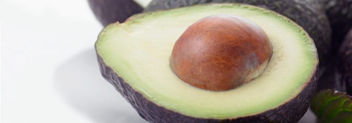 Chiropractic Colchester CT Avocado
